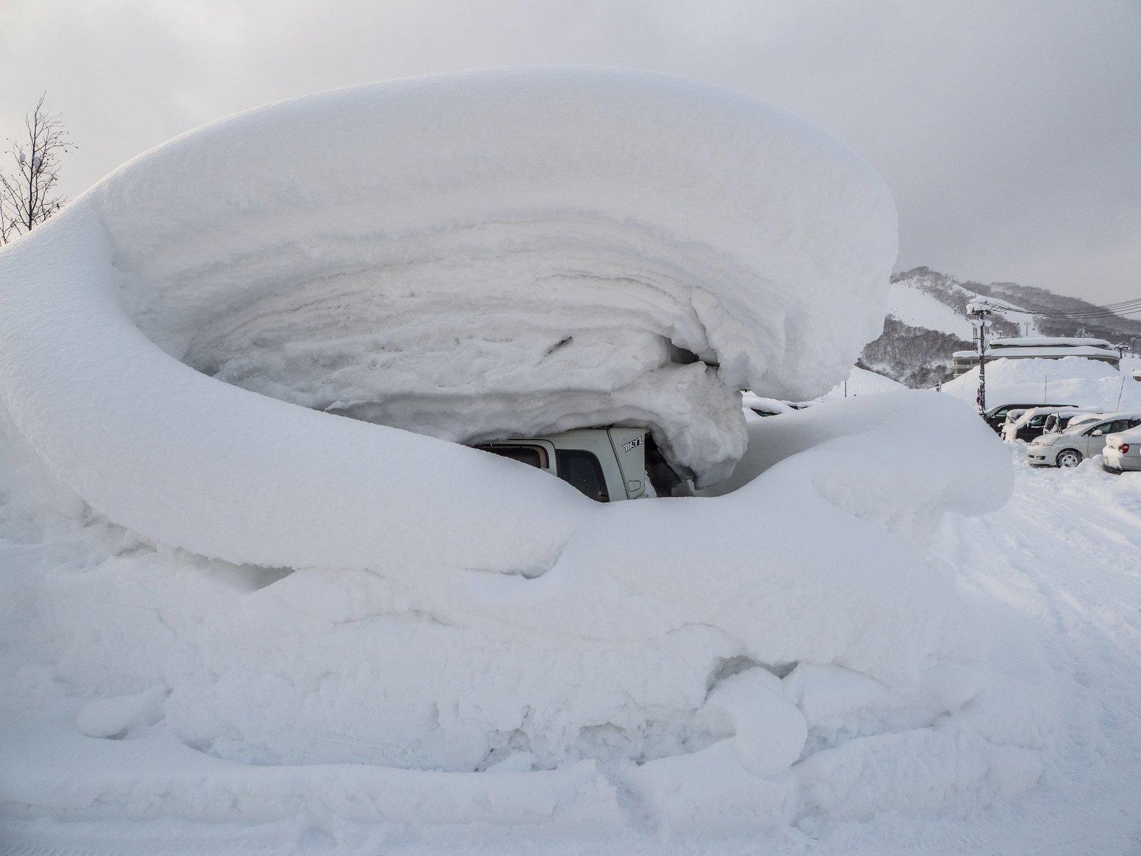 ニセコで雪に埋もれた車