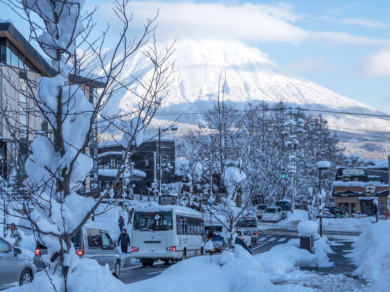 雪のヒラフ坂を下る自動車たち