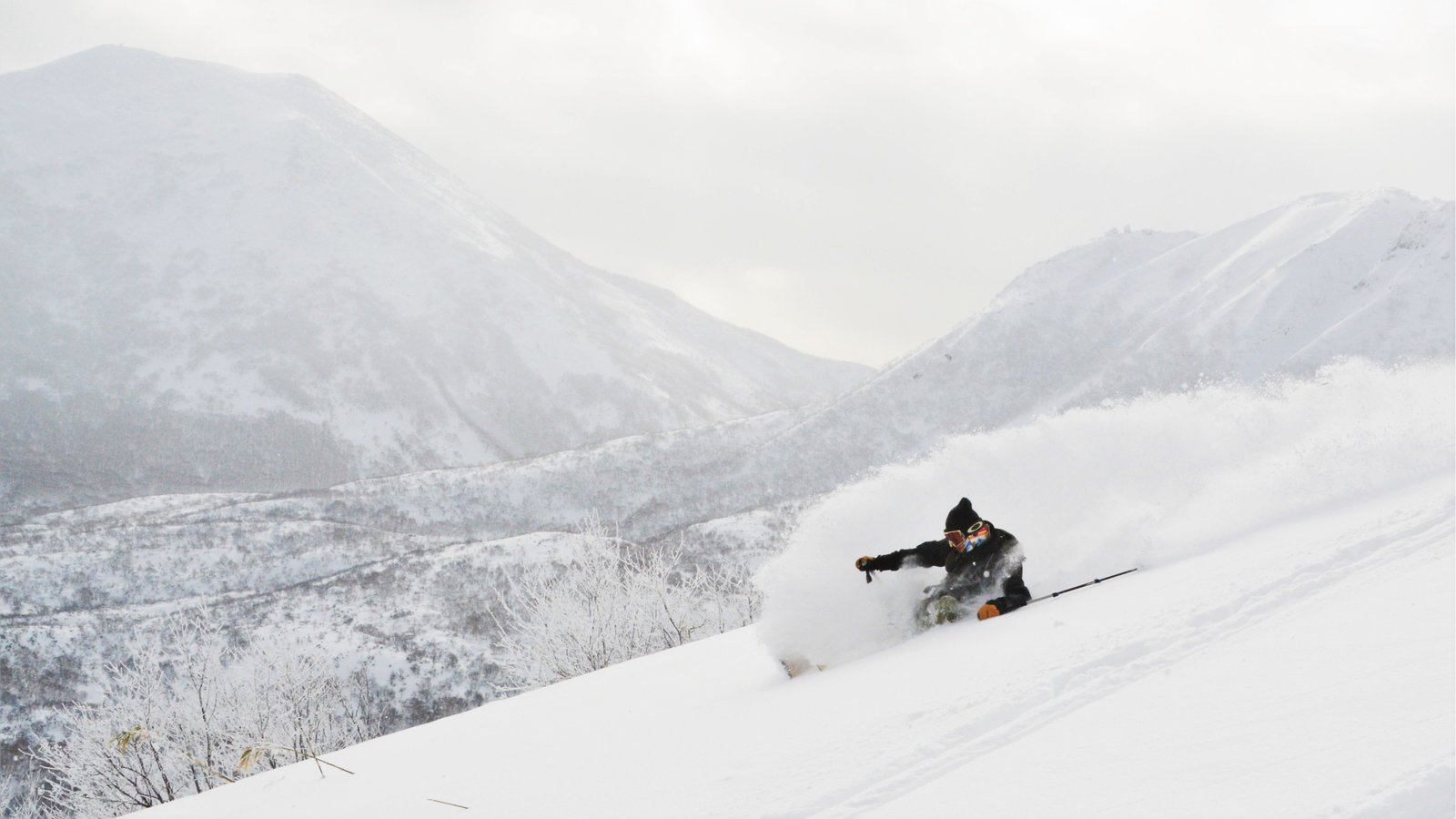 Skier shredding famous japanese Powder with Weiss Cat Ski program