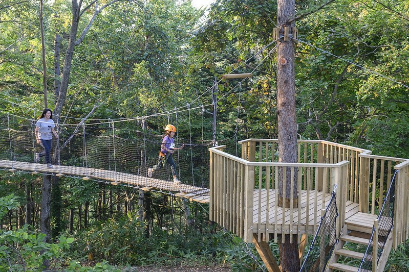 Niseko Hanazono Tree Walk course
