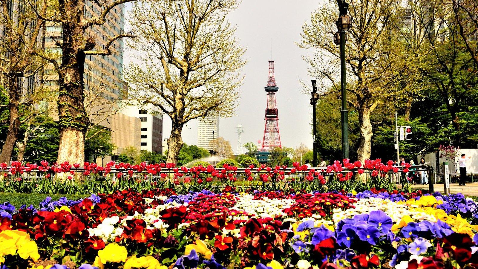 Sapporo City, Hokkaido Japan