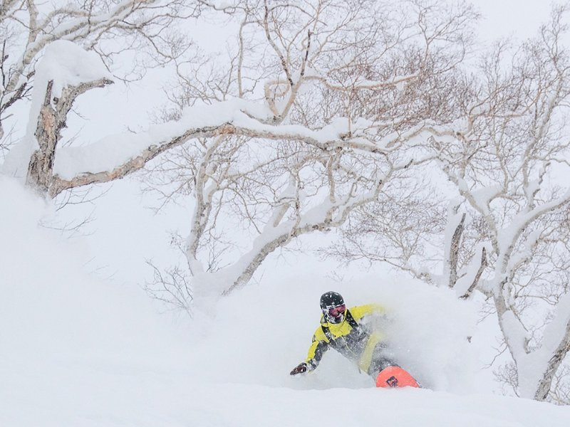 Hanazono Powder Guides - Private Tours