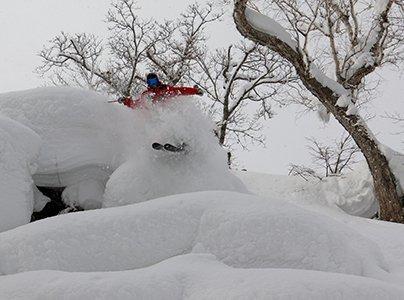 花園度假村粉雪導賞 - 保證新雪體驗