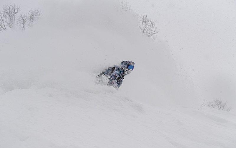 roxy snowboards torah bright hanazono niseko