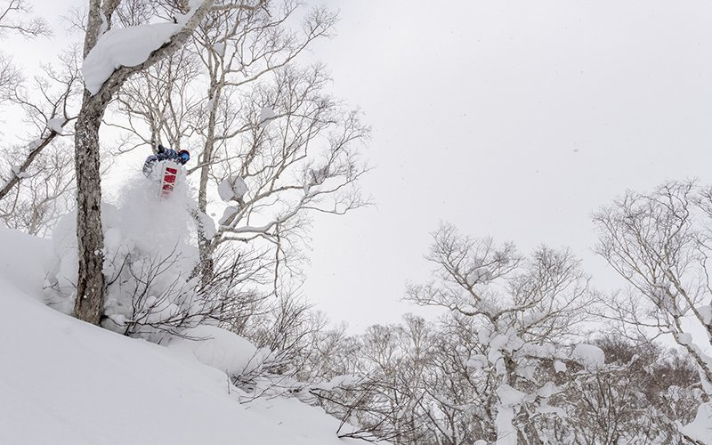 roxy snowboards hanazono strawberry fields