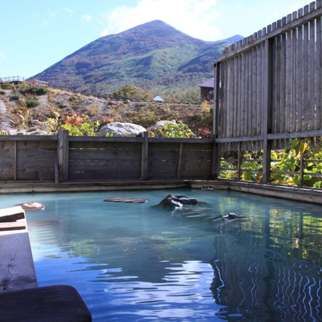 Vacation niseko goshiki onsen special discount medium