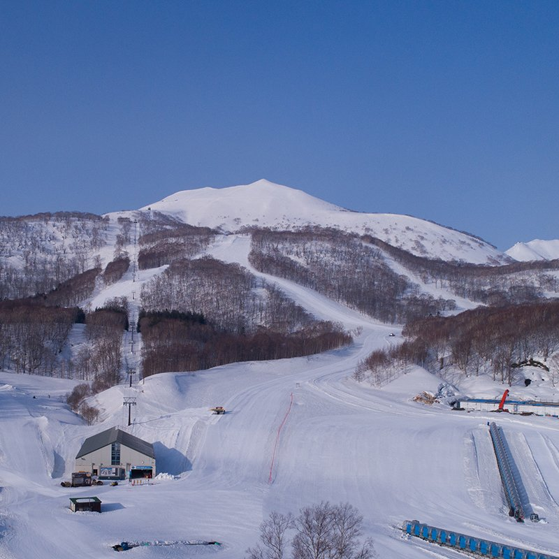 Hanazono niseko faction roxy skis demo medium