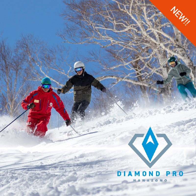 New diamond pro medium